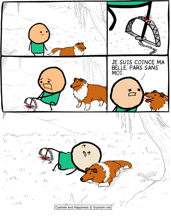 chien mort cyanide