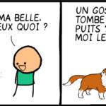 chien puits image