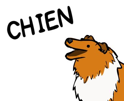 image du chien pour suite comics