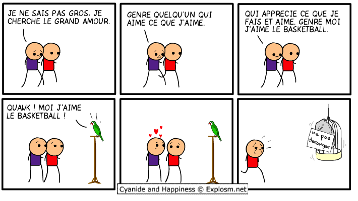 perroquet amour cyanide