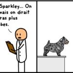 chien docteur image