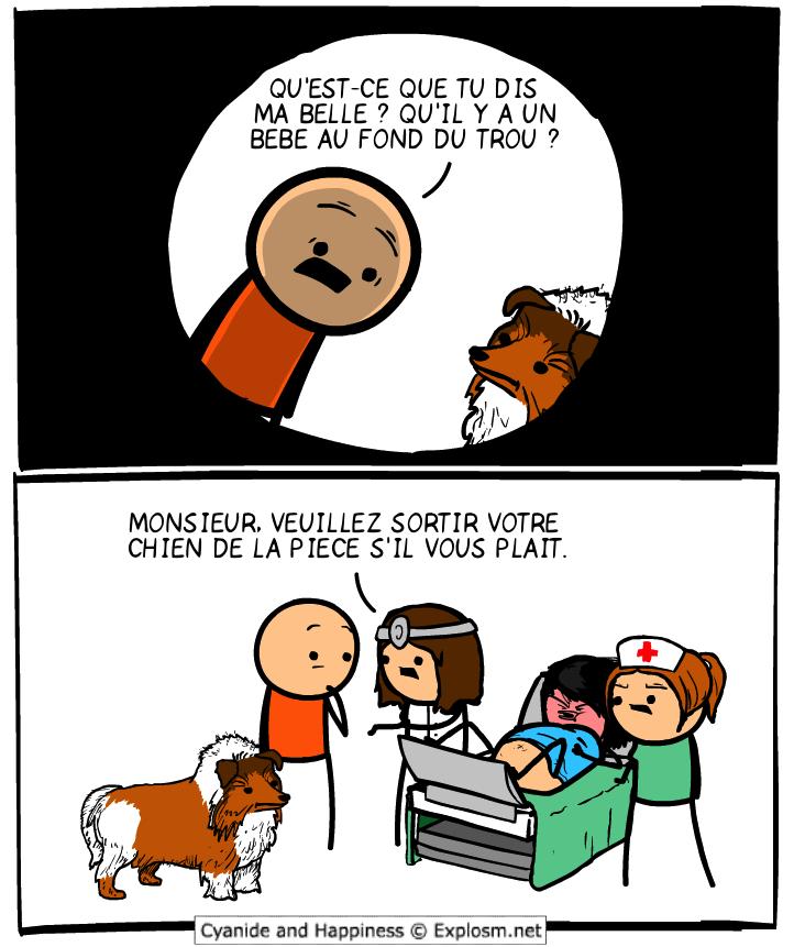 trou chien cyanide