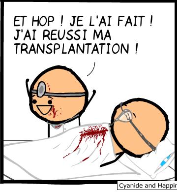 J'ai réussi ma transplantation !