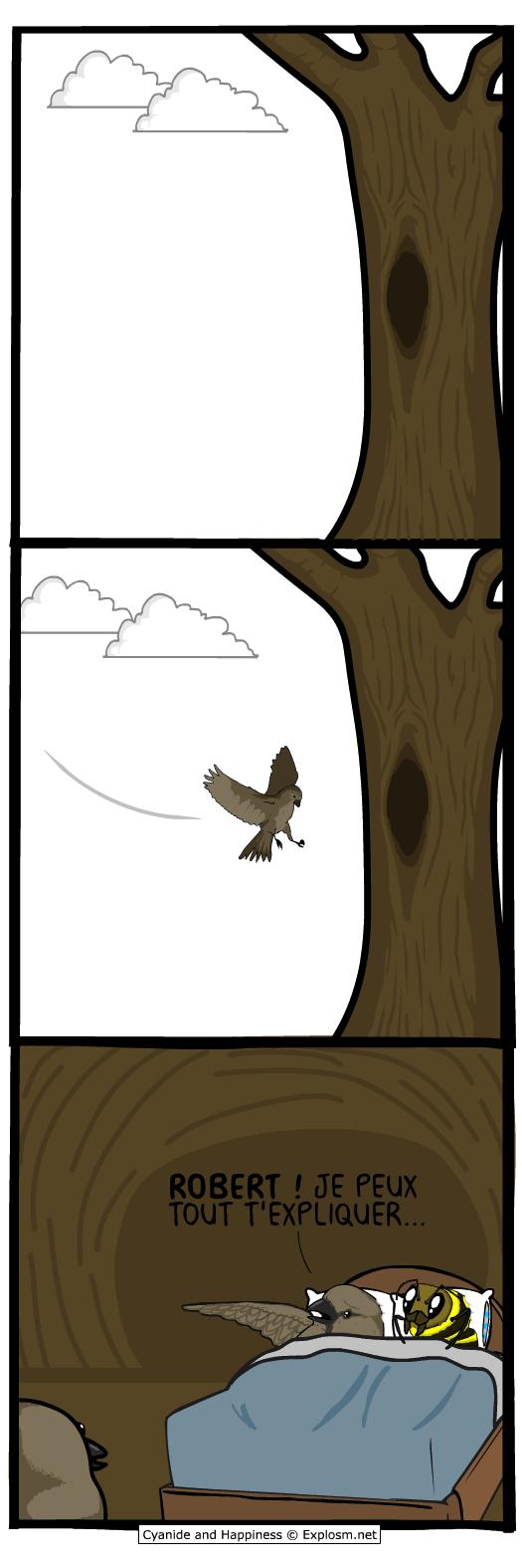 oiseau tromper cyanide