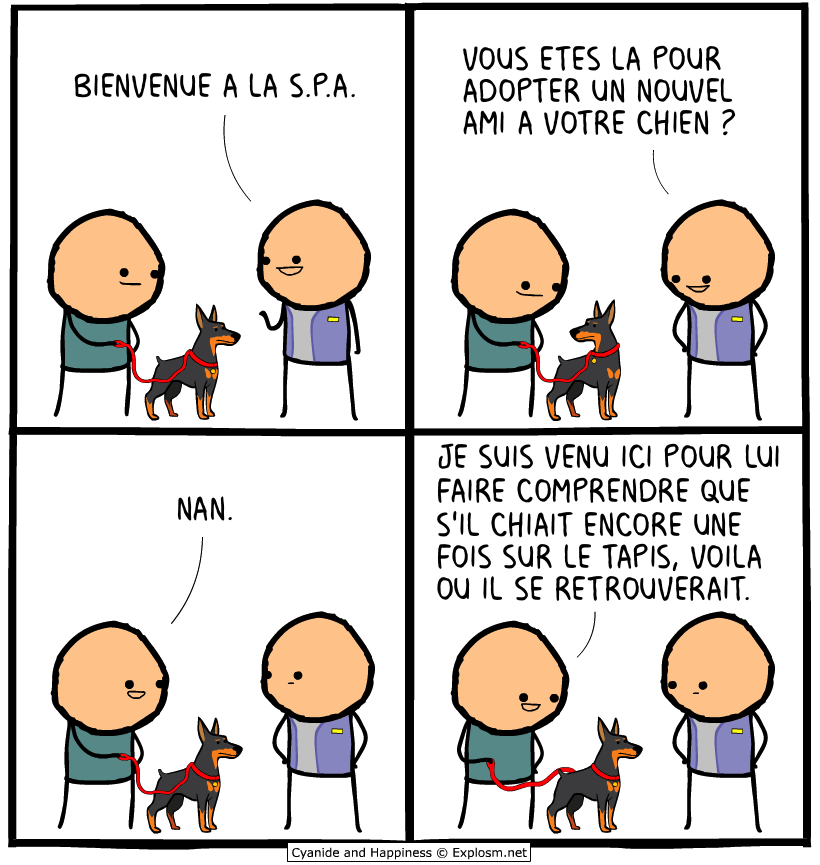 chien spa cyanide